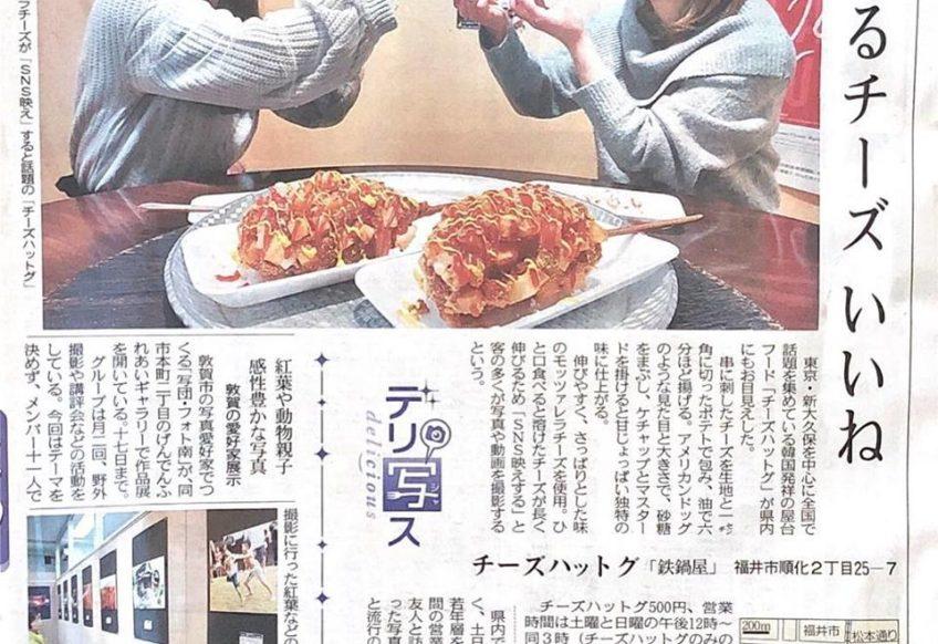 日刊県民福井 チーズハットグ